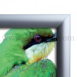 Cadre Clic-Clac d'affichage - Profil 25mm B1