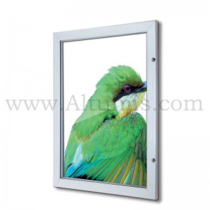 Lockable Poster Case with plastic backwall