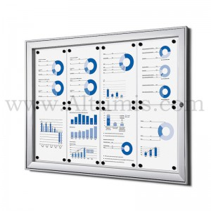 Indoor lockable showcase Standard B1